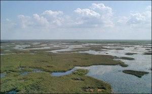 florida_wetlands_helicopter